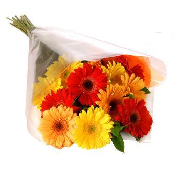 Karisik renklerde gerbera buketi  Iğdır Yaycı çiçek mağazası , çiçekçi adresleri