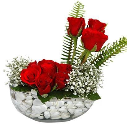 cam içerisinde 9 adet kirmizi gül  Iğdır Özdemir hediye sevgilime hediye çiçek