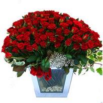 Iğdır Akyumak 14 şubat sevgililer günü çiçek   101 adet kirmizi gül aranjmani
