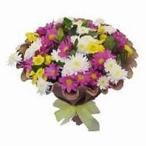 Iğdır Karaağaç internetten çiçek satışı  Mevsim kir çiçegi demeti