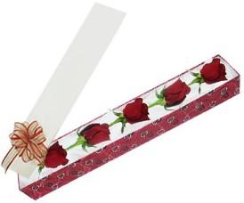 Iğdır Enginalan uluslararası çiçek gönderme  kutu içerisinde 5 adet kirmizi gül