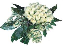 Iğdır Melekli anneler günü çiçek yolla  9 Beyaz gül Özel kisiler için