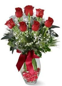 Iğdır Melekli anneler günü çiçek yolla  7 adet kirmizi gül cam vazo yada mika vazoda