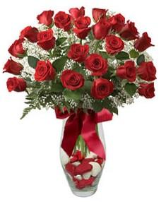 17 adet essiz kalitede kirmizi gül  Iğdır karakoyunlu çiçek gönderme sitemiz güvenlidir