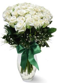 19 adet essiz kalitede beyaz gül  Iğdır Akyumak 14 şubat sevgililer günü çiçek