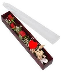 kutu içerisinde 3 adet gül ve oyuncak  Iğdır Yaycı çiçek mağazası , çiçekçi adresleri