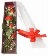 kutu içinde 5 adet kirmizi gül  Iğdır Melekli anneler günü çiçek yolla