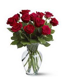 Iğdır 14 kasım hediye çiçek yolla  cam yada mika vazoda 10 kirmizi gül