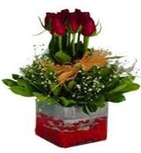 Iğdır Söğütlü çiçek siparişi sitesi  7 adet mika yada cam vazoda gül tanzimi