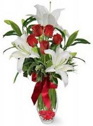 Iğdır Özdemir hediye sevgilime hediye çiçek  5 adet kirmizi gül ve 3 kandil kazablanka