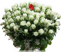 Iğdır Enginalan uluslararası çiçek gönderme  100 adet beyaz 1 adet kirmizi gül buketi