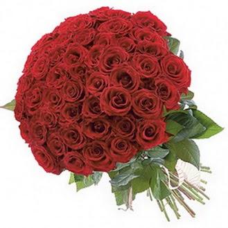 Iğdır Hakveis çiçek gönderme  101 adet kırmızı gül buketi modeli