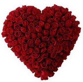 Iğdır Halfeli cicek , cicekci  muhteşem kırmızı güllerden kalp çiçeği