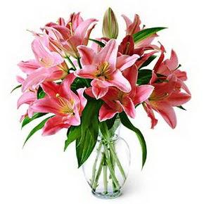 3 dal kazablanka görsel vazosu  Iğdır Melekli anneler günü çiçek yolla