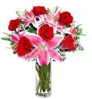 Iğdır 12 eylül çiçekçi mağazası  1 dal cazablanca ve 6 kırmızı gül çiçeği