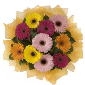 Iğdır Bağlar ucuz çiçek gönder  11 adet karışık gerbera çiçeği buketi