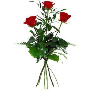 Iğdır Kasımcan kaliteli taze ve ucuz çiçekler  3 adet kırmızı gülden buket