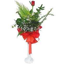 Iğdır çiçek yolla yurtiçi ve yurtdışı çiçek siparişi  Cam vazoda masum tek gül