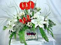 Iğdır karakoyunlu çiçek gönderme sitemiz güvenlidir  Anthurim Kazablanka  gül