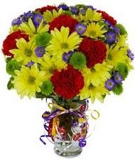 En güzel hediye karışık mevsim çiçeği  Iğdır Aşağı erhacı online çiçek gönderme sipariş