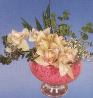 Iğdır karakoyunlu çiçek gönderme sitemiz güvenlidir  Dal orkide kalite bir hediye