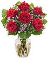 Kız arkadaşıma hediye 6 kırmızı gül  Iğdır Melekli anneler günü çiçek yolla