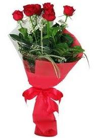 Çiçek yolla sitesinden 7 adet kırmızı gül  Iğdır Enginalan uluslararası çiçek gönderme