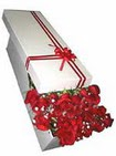 Iğdır Karaağaç internetten çiçek satışı  11 adet 1.kalite magnum güller