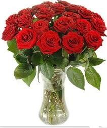 Iğdır karakoyunlu çiçek gönderme sitemiz güvenlidir  Vazoda 15 adet kırmızı gül tanzimi