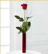 Vazo içerisinde 1 adet kırmızı gül  Iğdır Melekli anneler günü çiçek yolla
