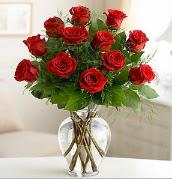 Vazo içerisinde 12 kırmızı gül  Iğdır 7 kasım çiçekçiler