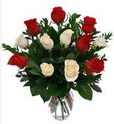 Vazo içerisinde 6 kırmızı 6 beyaz gül  Iğdır Aşağı erhacı online çiçek gönderme sipariş
