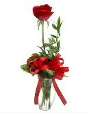 vazo içerisinde 1 adet kırmızı gül  Iğdır Karaağaç internetten çiçek satışı
