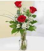 Vazo içerisinde 3 adet kırmızı gül  Iğdır 7 kasım çiçekçiler
