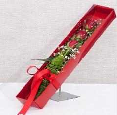 Kutu içerisinde 3 adet kırmızı gül  Iğdır Karakuyu çiçek online çiçek siparişi