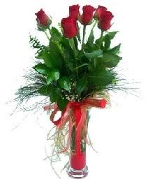 vazo içerisinde 5 kırmızı gül  Iğdır Hakveis çiçek gönderme