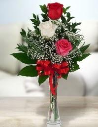 Camda 2 kırmızı 1 beyaz gül  Iğdır Cumhuriyet çiçek siparişi vermek