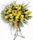 Iğdır Kışla çiçekçi telefonları  Sari kazablanka Ferforje