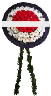 mozele çiçeği  Iğdır çiçek gönder online çiçekçi , çiçek siparişi