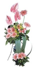 Iğdır Hakveis çiçek gönderme  Pembe Antoryum Harikalar Rüyasi