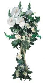 Iğdır karakoyunlu çiçek gönderme sitemiz güvenlidir  antoryumlarin büyüsü özel