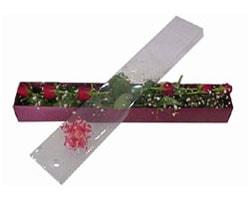 Iğdır çiçek yolla yurtiçi ve yurtdışı çiçek siparişi   6 adet kirmizi gül kutu içinde