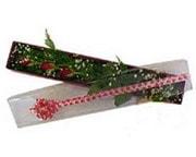 Iğdır Aşağı erhacı online çiçek gönderme sipariş  3 adet gül.kutu yaldizlidir.