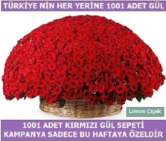 1001 Adet kırmızı gül Bu haftaya özel  Iğdır Bağlar ucuz çiçek gönder