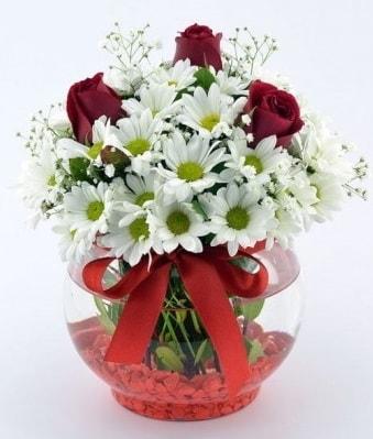 Fanusta 3 Gül ve Papatya  Iğdır Enginalan uluslararası çiçek gönderme