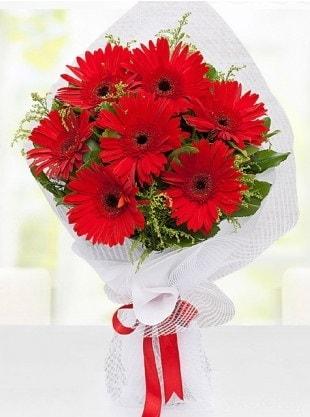 Kırmızı Gelbera Buketi  Iğdır Melekli anneler günü çiçek yolla