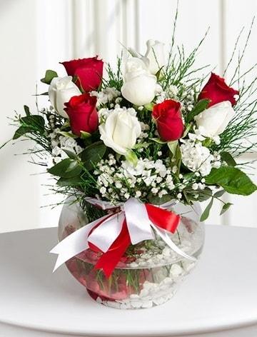 Aşk Küresi  5 beyaz 5 kırmızı gül fanusta  Iğdır Enginalan uluslararası çiçek gönderme