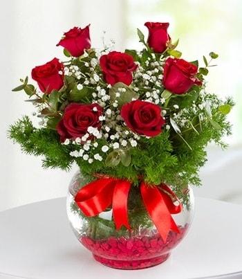 fanus Vazoda 7 Gül  Iğdır Konaklı internetten çiçek siparişi