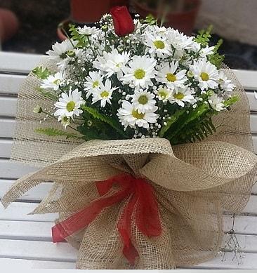 Papatya 1 adet kırmızı gül buketi  Iğdır Akyumak 14 şubat sevgililer günü çiçek