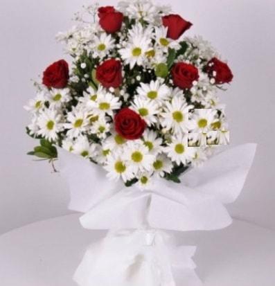 7 adet kırmızı gül ve papatyalar krizantem  Iğdır Enginalan uluslararası çiçek gönderme